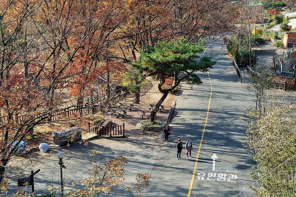 seoul_grand_park_aerial_view