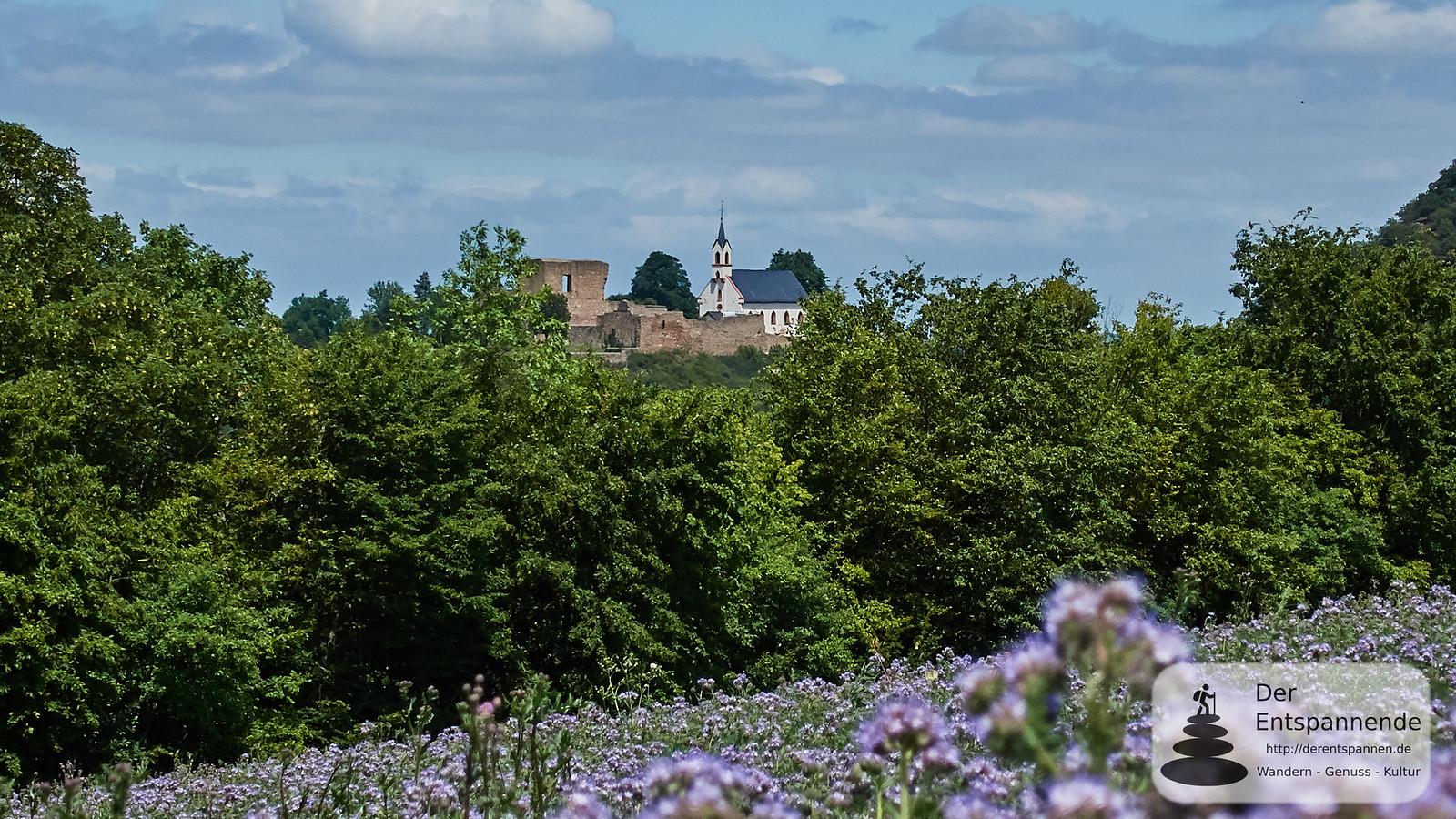 Burgruine Neuenbaumburg (Neu-Bamberg)