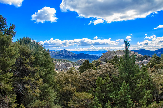 Pinyon Pine and City, Canon EOS 7D, Canon EF-S 18-200mm f/3.5-5.6 IS