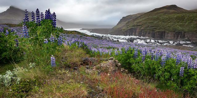 Surprising Colors of Iceland