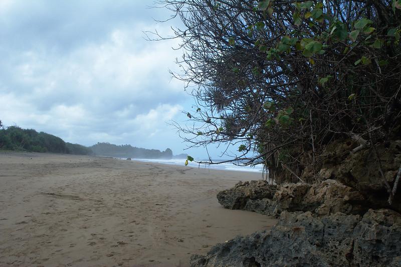 Pasir pantai Wonogoro