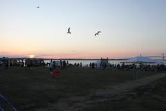 Newport Folk Fest 2018