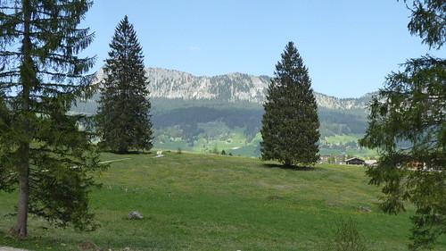 Tannheimertal bei Tannheim (mit Tannen).