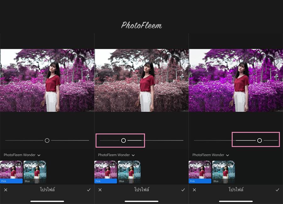 PhotoFleem-Wonder-basic02