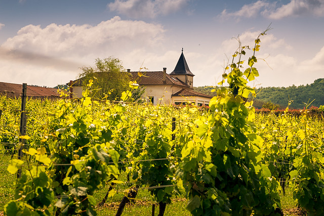 Delinat Weinreise Bordeaux 2018