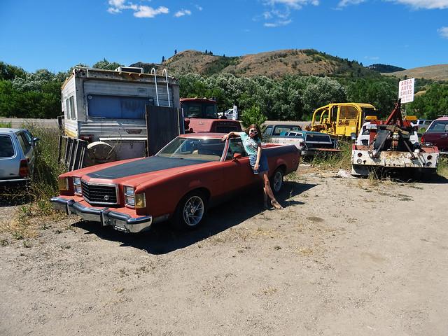 car junk yard (11)