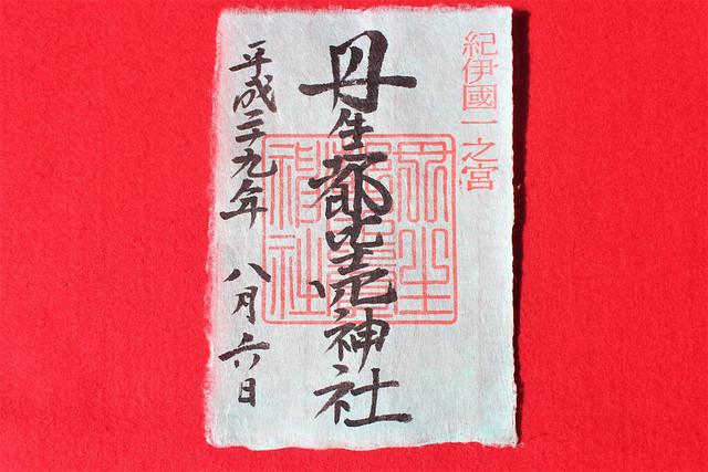 kinokawa6005