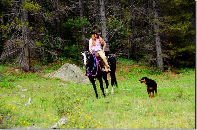 Rider and dog (1)