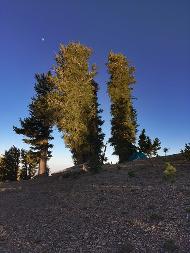 astrophotography hiking lasvegas moon mtcharleston nevada northlooptrail weather sunset