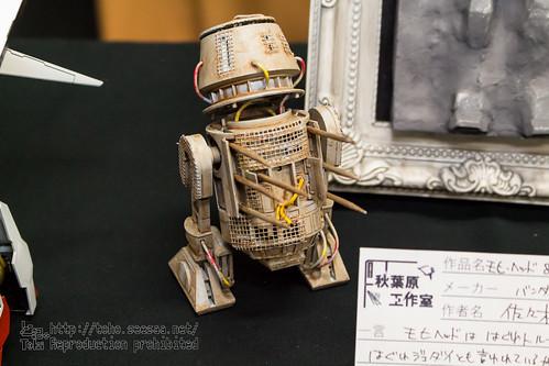 akikosai2018_05-31