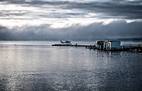 seaplane plane lakerotorua rotorua newzealand nz fuji fujifilm fujifilmxt2 fujiphotography monochrome monochromephotography lake sunrise earlymorning goodlight landscape landscapephotography