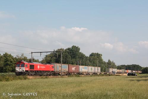 La Class 66 DE 6311 Crossrail remonte d'Anvers avec des containers