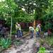 Fundación ADSIS Huerto voluntarios  del Centro Paradoja_20180627_Jose Fernando Garcia_23