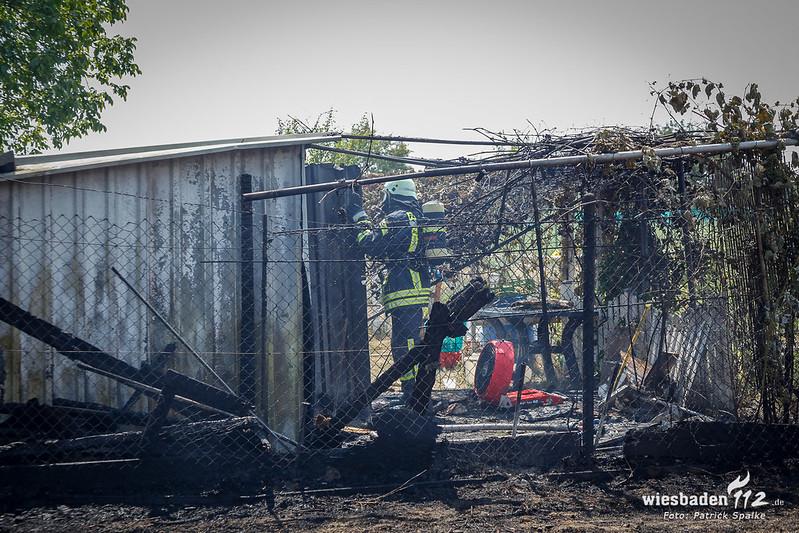 Flächenbrand Hattersheim 14.07.18