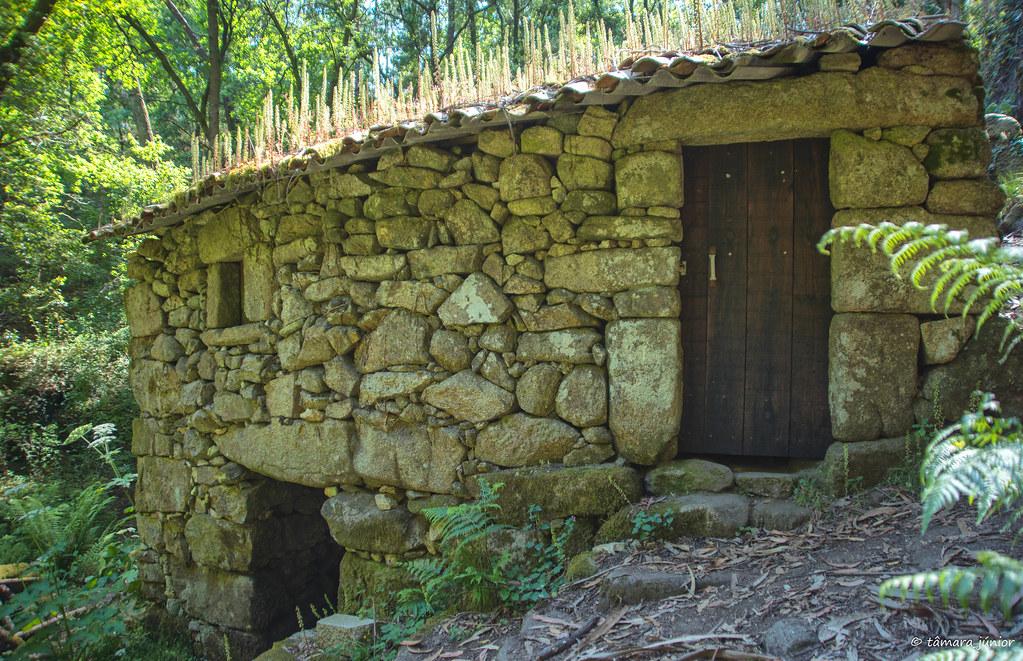74.- Rota do Monte Aloia (647)