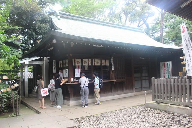 shibuyahikawa006