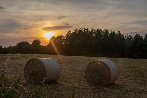 landschappen zon zonsondergang velden sterrenkunde hoegaarden vlaanderen belgium be
