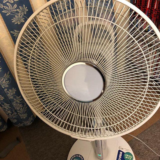 あまりの蒸し暑さに耐えかねて、扇風機出しました。。 #扇風機はじめました #扇風機2018 #夏始まった感ある #悲報 #まだ6月