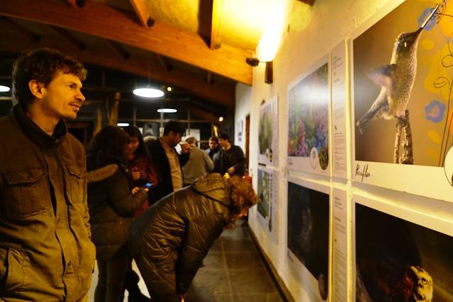 Valentina Díaz expuso en el lanzamiento de guía de aves en Santiago