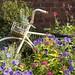 Garden Bicycle