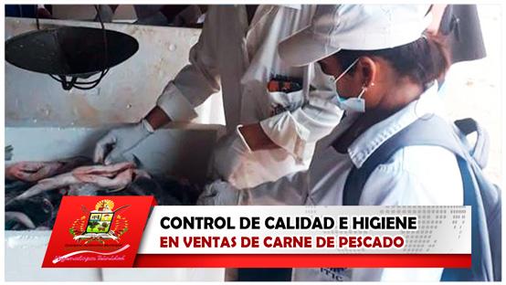 control-de-calidad-e-higiene-en-ventas-de-carne-de-pescado