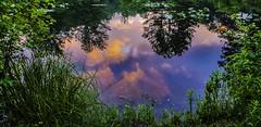 A Celestial Pool
