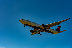 Arrivals Schiphol Airport Netherland Am 08/07/2018