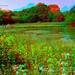 Townhill loch (3d view with red/blue glasses)