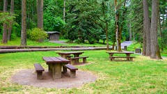 Picnic tables and restrooms in Hendricks Park in Eugene, Oregon