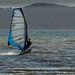 Windsurfer on the Solent