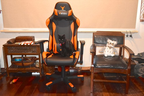 A gamer's chair turned up in our lounge overnight 15 July 2018