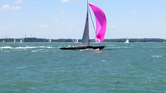 TODAY WE SAIL IN PINK...