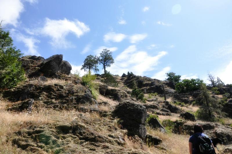 Spencer Butte 1 @ Mt. Hope Chronicles