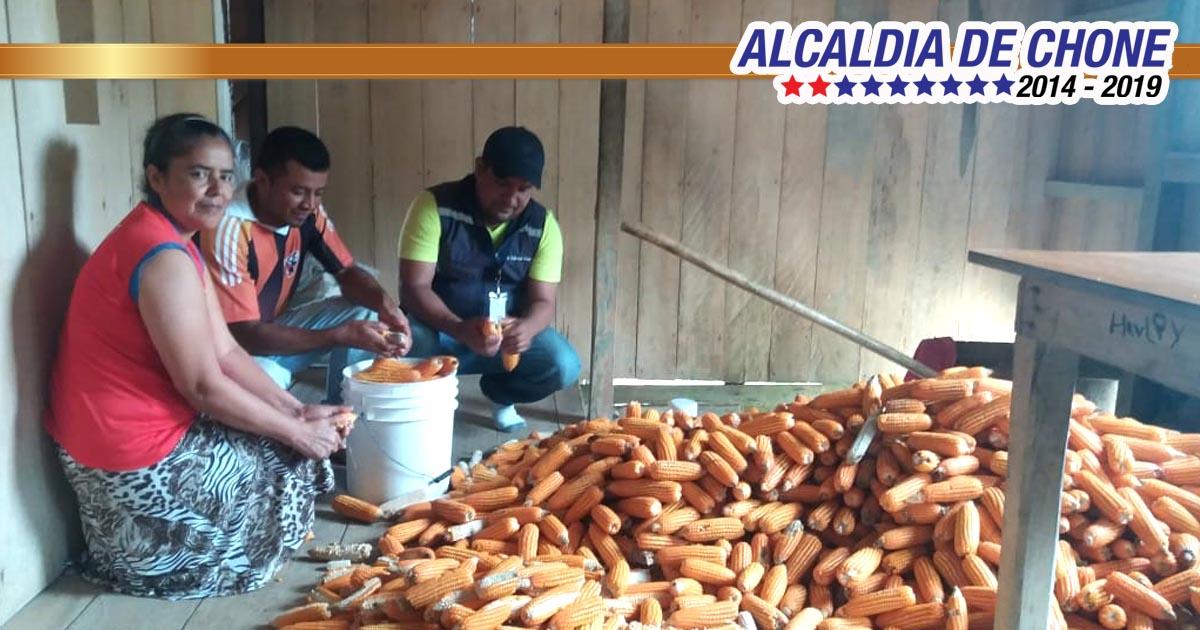 Capacitaciones en temas agrícolas, pecuarios y agroindustriales se desarrollan en Chibunga