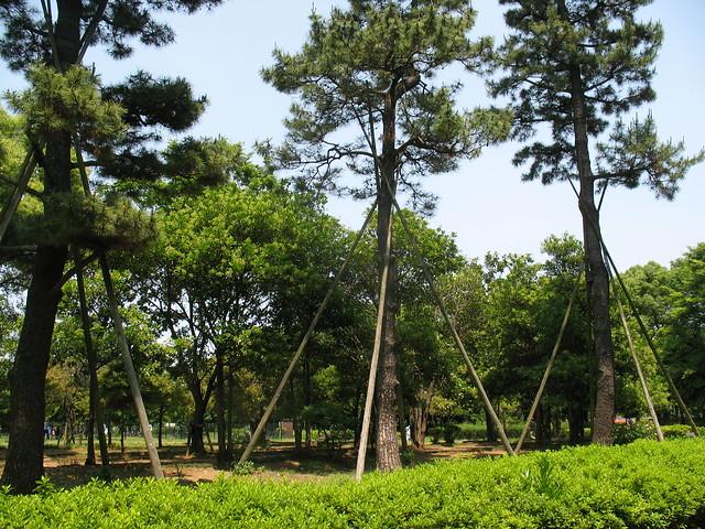 Kiba Garden, Tokyo