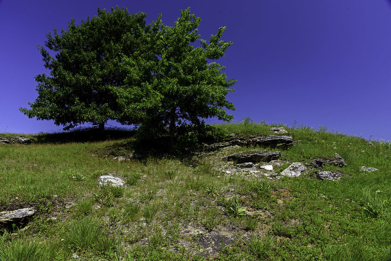 Outcropping on the Prairie