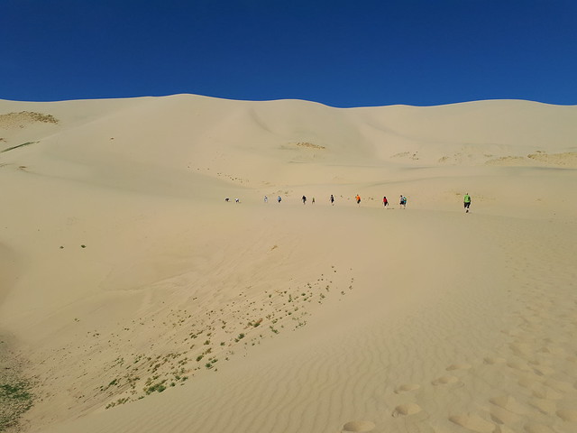 Rauf auf die Düne Khongorin Els (280m)