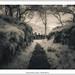 Quarrymen's track by mistymornings99