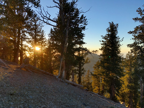 hiking lasvegas mtcharleston nevada northlooptrail weather sunset