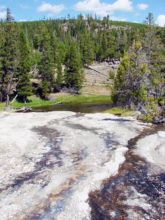 Geyser Runoff into Firehole River, Yellowstone 2011