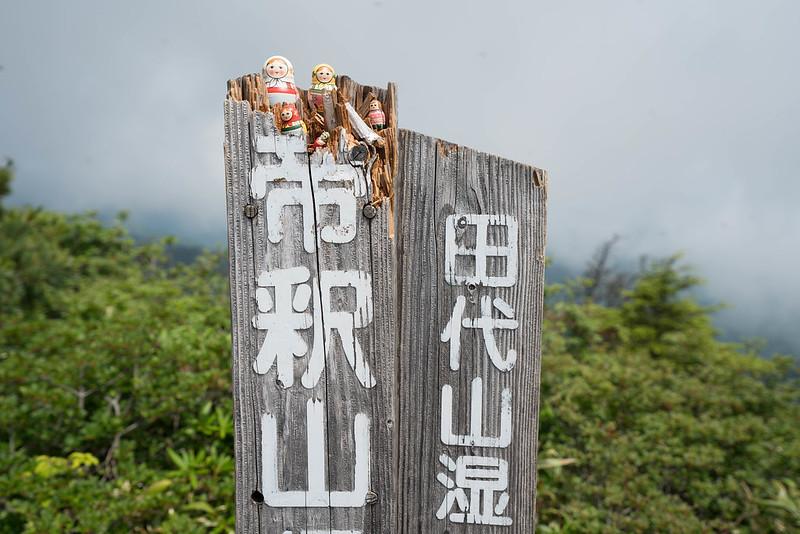 20180701_田代山~帝釈山_0465.jpg