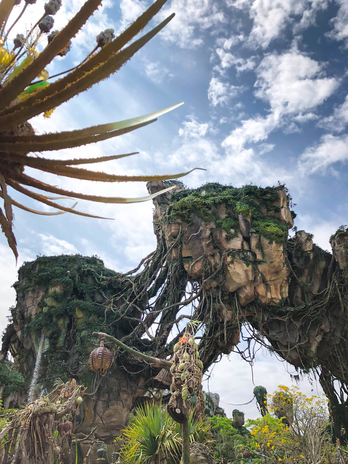 Pandora The World of Avatar Animal Kingdom Walt Disney World