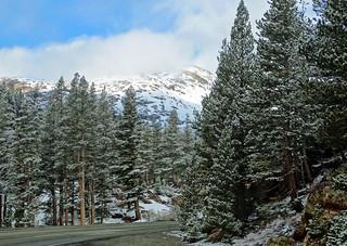 Yosemite High Country Spring Snow, May 2014