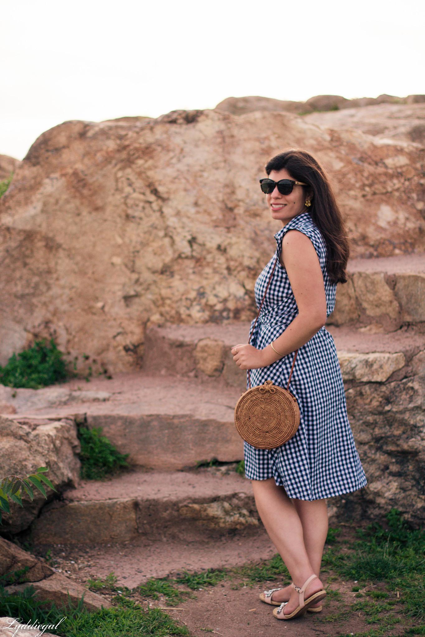 Gingham Dress, Round Straw Bag, Jeweled Sandals-6.jpg