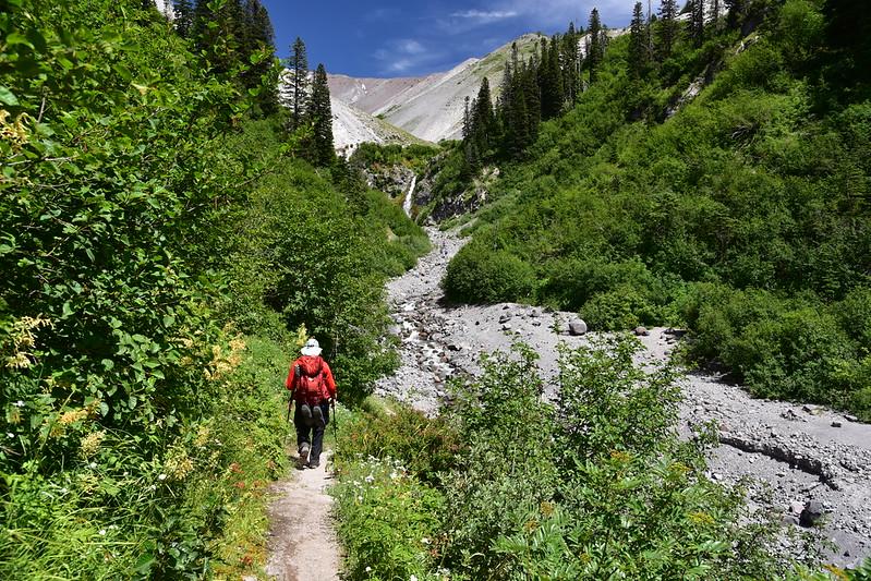 Paradise Park Hike