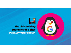 The Link Building Strategies Of 5 Sites That Survived Penguin 3 0