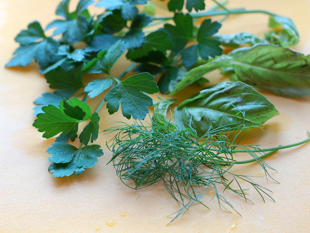 Trio of herbs by Eve Fox, Garden of Eating blog, copyright 2012