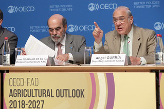 Launch of the OECD-FAO Agricultural Outlook