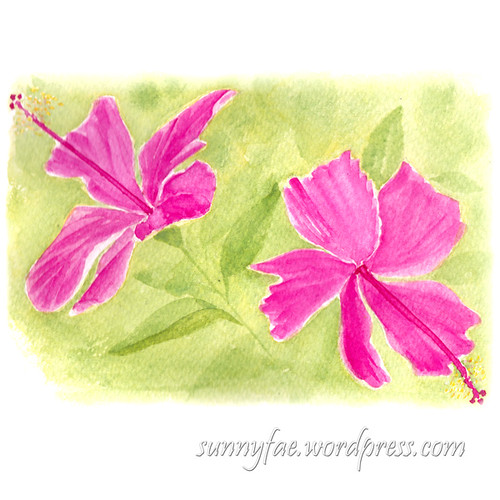 watercolour of two hibiscus flowers