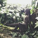 20180617-170132 - Garden Bokeh